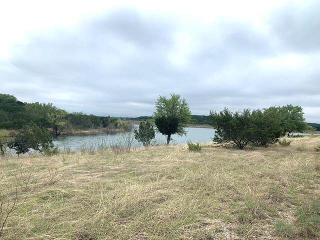 #395 Anglers Point, Bluff Dale, TX 76433 (#14555408) :: Homes By Lainie Real Estate Group