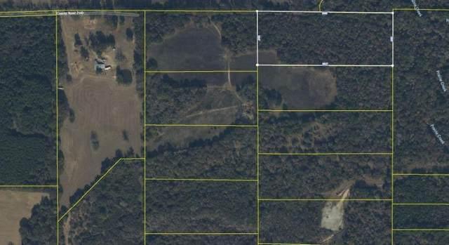 14382 Cr 2140, Whitehouse, TX 75791 (MLS #14555512) :: Trinity Premier Properties