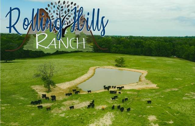 00 County Road 4343, Larue, TX 75770 (MLS #14556024) :: Real Estate By Design