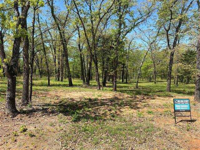 Lot 11 Knotted Oaks Court, Valley View, TX 76272 (MLS #14556084) :: Russell Realty Group