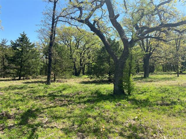 Lot 7 Knotted Oaks Court, Valley View, TX 76272 (MLS #14556115) :: Russell Realty Group