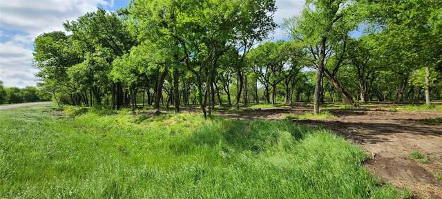 TBD Fm 2450, Sanger, TX 76266 (MLS #14556169) :: The Mauelshagen Group
