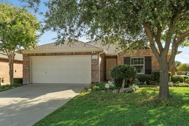 2700 Enchanted Eve Drive, Little Elm, TX 75068 (MLS #14556176) :: All Cities USA Realty
