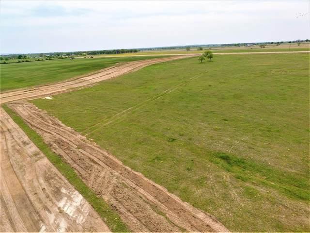 TBD Grass Roots Road, Tolar, TX 76476 (MLS #14556440) :: VIVO Realty