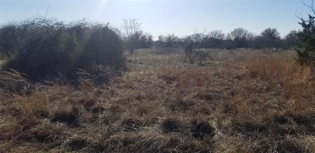 12084 Rolling Oaks Drive, Whitney, TX 76692 (MLS #14556565) :: Wood Real Estate Group