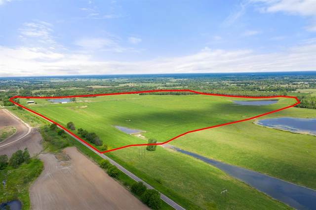 TBD 1 Fm 1734, Mount Pleasant, TX  (#14556936) :: Homes By Lainie Real Estate Group