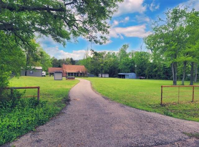 875 Vz County Road 4409, Ben Wheeler, TX 75754 (#14557450) :: Homes By Lainie Real Estate Group