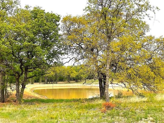 05 Jordan Road, Poolville, TX 76487 (MLS #14557560) :: Lisa Birdsong Group | Compass