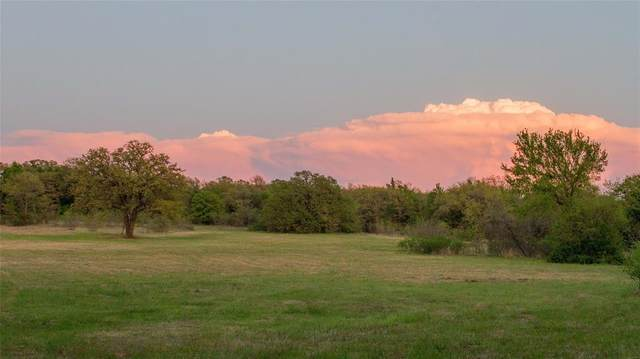 30 Ac Cr 3519, Bridgeport, TX 76426 (#14557699) :: Homes By Lainie Real Estate Group