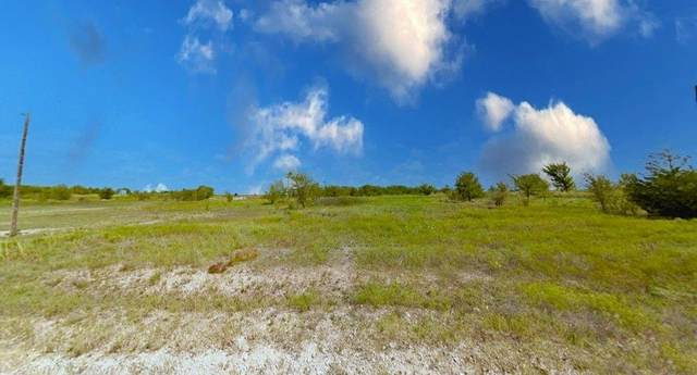 Lot 4 Tilly, Decatur, TX 76234 (MLS #14557843) :: Results Property Group