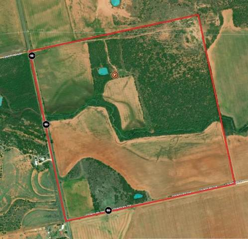 TBD Fm 1085, Trent, TX 79561 (#14557850) :: Homes By Lainie Real Estate Group