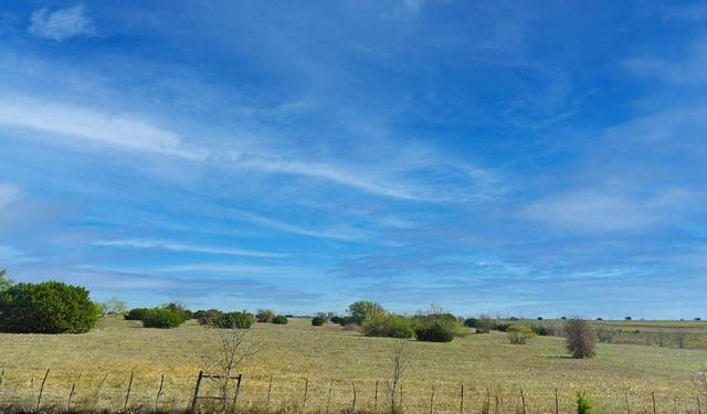 7313 Canterbury Drive, Cleburne, TX 76033 (MLS #14558295) :: VIVO Realty