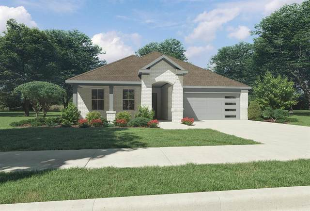 334 Chase Creek Drive, Lavon, TX 75166 (MLS #14559184) :: Lisa Birdsong Group | Compass