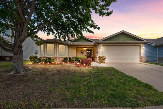 9944 Thomas Jefferson Drive, Mckinney, TX 75072 (MLS #14559289) :: Wood Real Estate Group