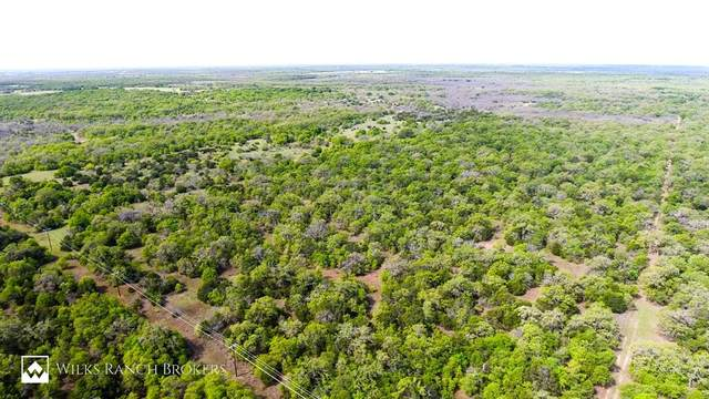 TBD County Road 125, Eastland, TX 76424 (MLS #14559680) :: The Chad Smith Team