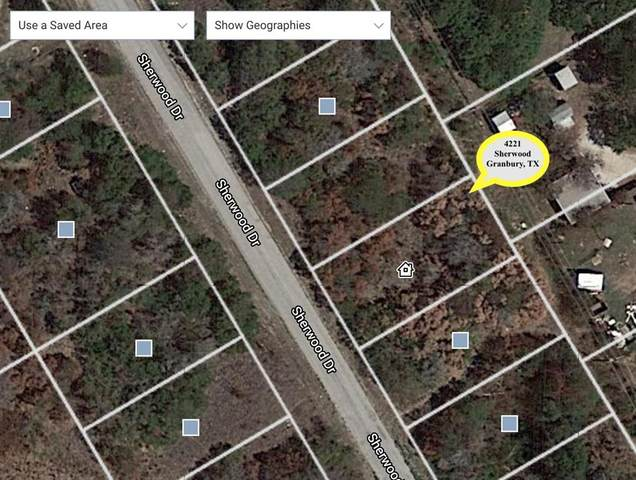 4221 Sherwood Drive, Granbury, TX 76048 (MLS #14560301) :: Craig Properties Group