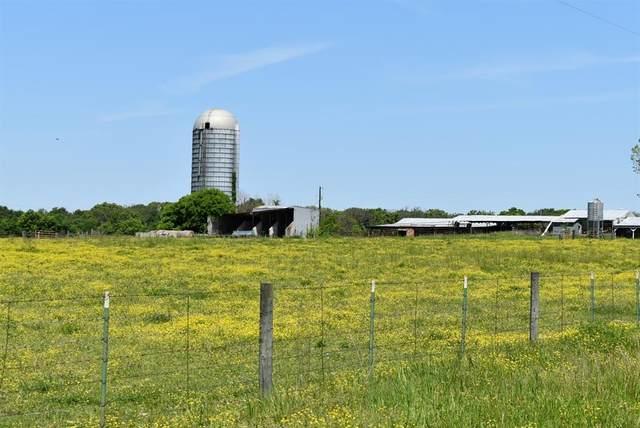 534 County Road 1978, Yantis, TX 75497 (MLS #14560573) :: The Kimberly Davis Group