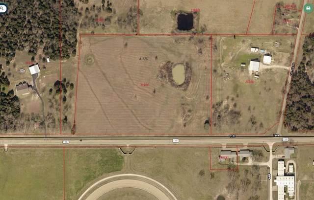 1569 Fm 1567, Lone Oak, TX 75453 (MLS #14560649) :: The Kimberly Davis Group