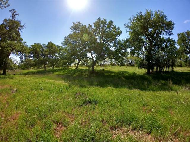 18301 County Road 214, Brookesmith, TX 76827 (MLS #14561056) :: The Chad Smith Team