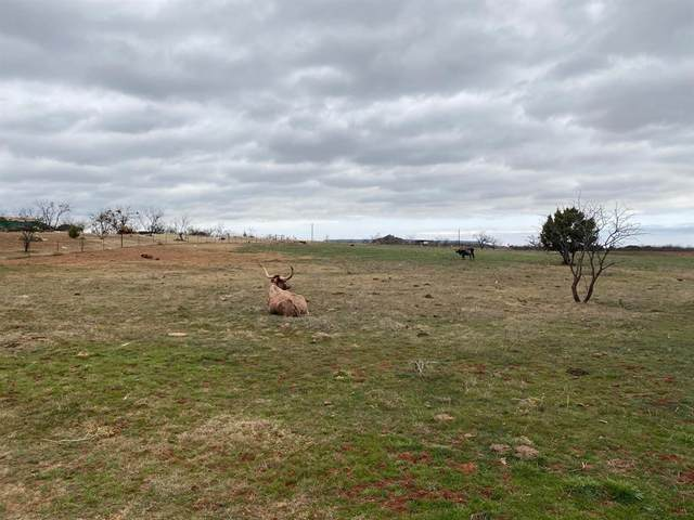 Lot 4 County Rd 142, Tuscola, TX 79562 (MLS #14561855) :: DFW Select Realty