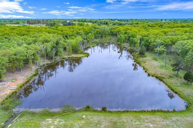 1995 County Rd 3117, Edgewood, TX 75117 (MLS #14562113) :: All Cities USA Realty