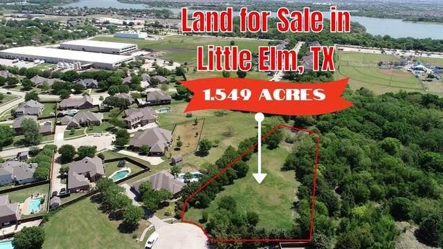 73 Stillwater Cove Drive, Little Elm, TX 75068 (MLS #14562519) :: Real Estate By Design