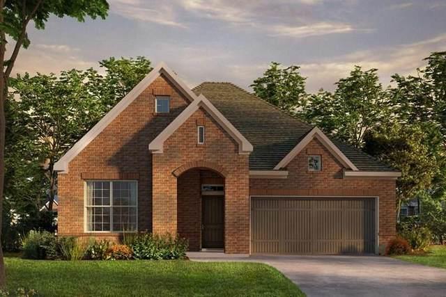 352 Moonvine Drive, Little Elm, TX 75068 (MLS #14563663) :: Team Hodnett