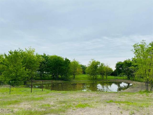 00 County Road 1100, Blue Ridge, TX 75424 (#14564652) :: Homes By Lainie Real Estate Group