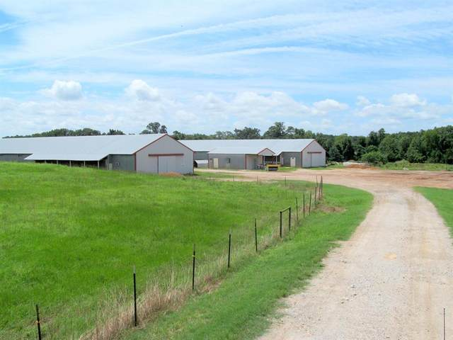 595 SE County Road 4340, Scroggins, TX 75480 (MLS #14564715) :: Team Tiller