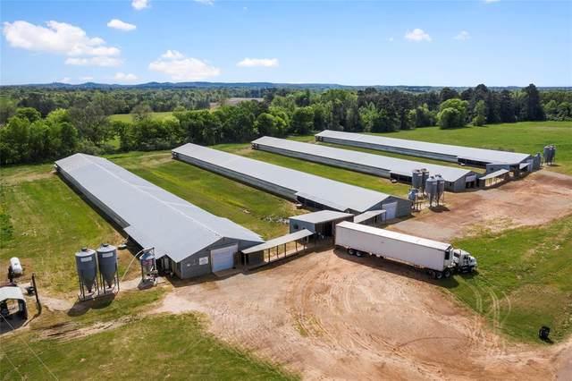 1189 Lavender, Gilmer, TX 75644 (MLS #14565061) :: Real Estate By Design
