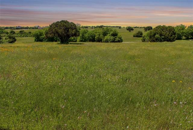 7217 Carnoustie Drive, Cleburne, TX 76033 (MLS #14565085) :: VIVO Realty