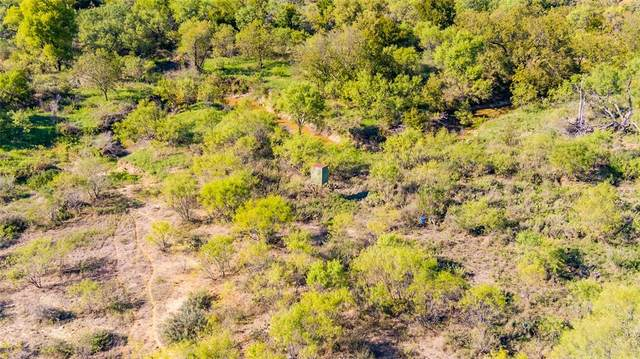 0000 County Road 248, Richland Springs, TX 76877 (MLS #14565602) :: Real Estate By Design