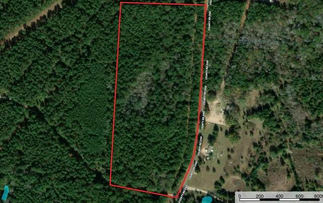20099 County Road 2160, Troup, TX 75789 (MLS #14565810) :: Real Estate By Design