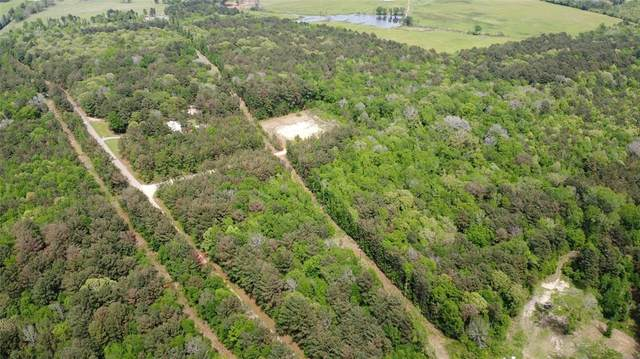 000 County Road 2160, Troup, TX 75789 (MLS #14565890) :: Real Estate By Design