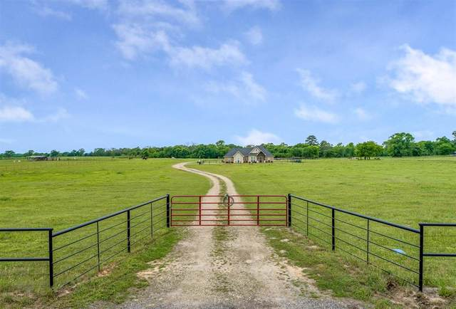 245 County Road 2360, Mineola, TX 75410 (MLS #14566569) :: The Good Home Team
