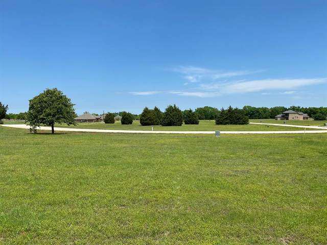 TBD Palisades, Gordonville, TX 76273 (MLS #14567121) :: Wood Real Estate Group