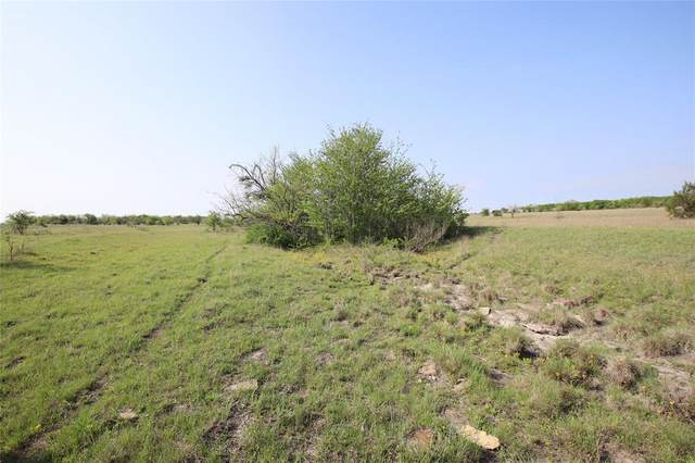TBD Cr 210-Jan Tract 12, Hamilton, TX 76531 (MLS #14567413) :: Robbins Real Estate Group