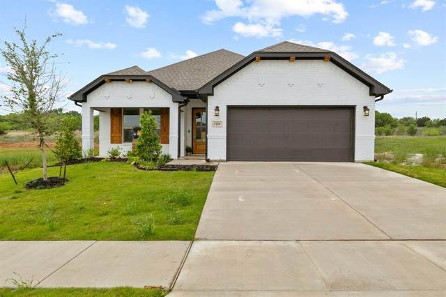 1224 Big Sky Drive, Weatherford, TX 76086 (#14567698) :: Homes By Lainie Real Estate Group