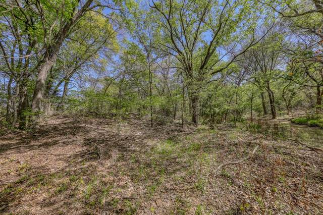 TBD 61 Bosal Lane, Weatherford, TX 76088 (#14567953) :: Homes By Lainie Real Estate Group