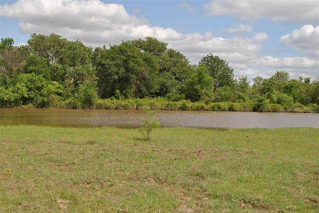 TBD County Road 102, Comanche, TX 76442 (MLS #14568417) :: All Cities USA Realty