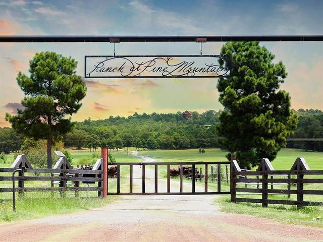 Lot 11 Acr 450, Palestine, TX 75803 (#14569029) :: Homes By Lainie Real Estate Group