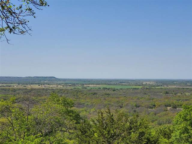 TBD Cr 177, Sidney, TX 76474 (MLS #14569235) :: The Mauelshagen Group