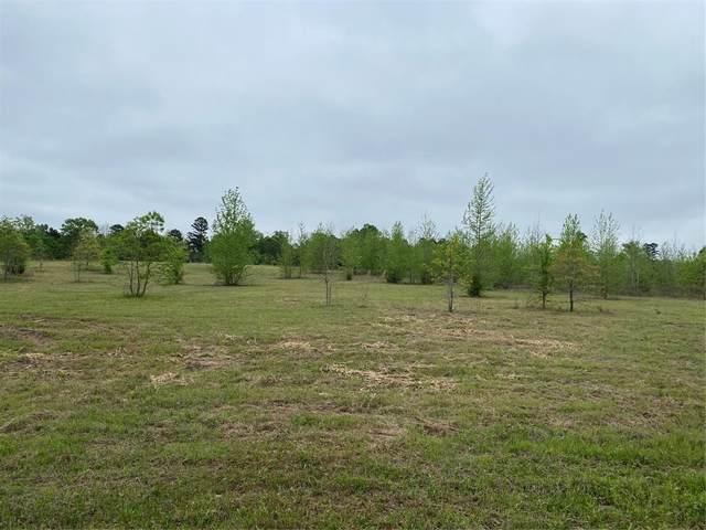 249 Private Road 7544, Hawkins, TX 75764 (MLS #14569734) :: Real Estate By Design