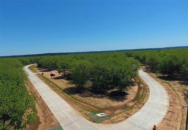 8014 Landings Road W, Granbury, TX 76049 (MLS #14570335) :: Justin Bassett Realty