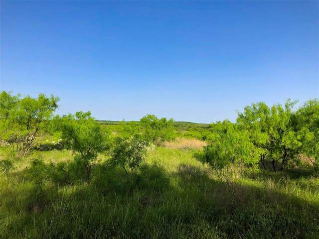 77 Ac Co Road 125, Cisco, TX 76437 (MLS #14570356) :: RE/MAX Landmark