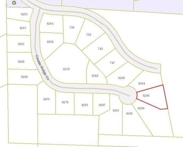 9298 Caddo Ridge Cove, Tyler, TX 75703 (MLS #14570493) :: The Kimberly Davis Group