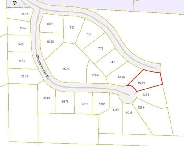 9294 Caddo Ridge Cove, Tyler, TX 75703 (MLS #14570496) :: The Kimberly Davis Group