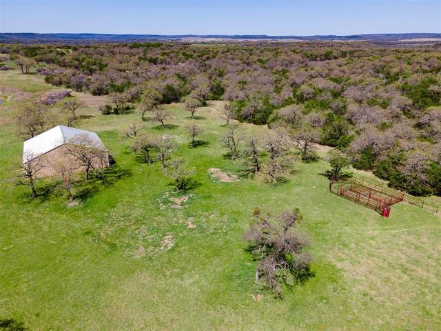 1020 Hess Road, Mineral Wells, TX 76068 (MLS #14571533) :: The Kimberly Davis Group