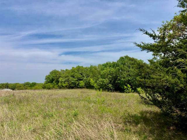 Lot 4 Jaybird Road, Bowie, TX 76230 (MLS #14571594) :: RE/MAX Landmark