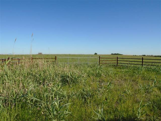 TBD Hcr 3214 3215, Penelope, TX 76676 (MLS #14571612) :: Real Estate By Design